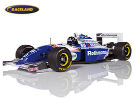 Williams-Renault FW16 F1 1994 Damon Hill *completely decorated*